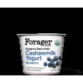 Save $1.00 Off any Forager Projectd Cashewmilk Yogurt (5.3oz)